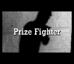 PrizeFighter title.png