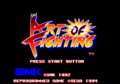 ArtofFighting Title.png