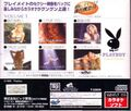 PlayboyKarakoeVolume1 Saturn JP Box Back.jpg